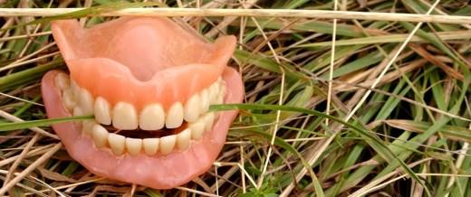 Zähne durch drogen schlechte Ist Cannabis